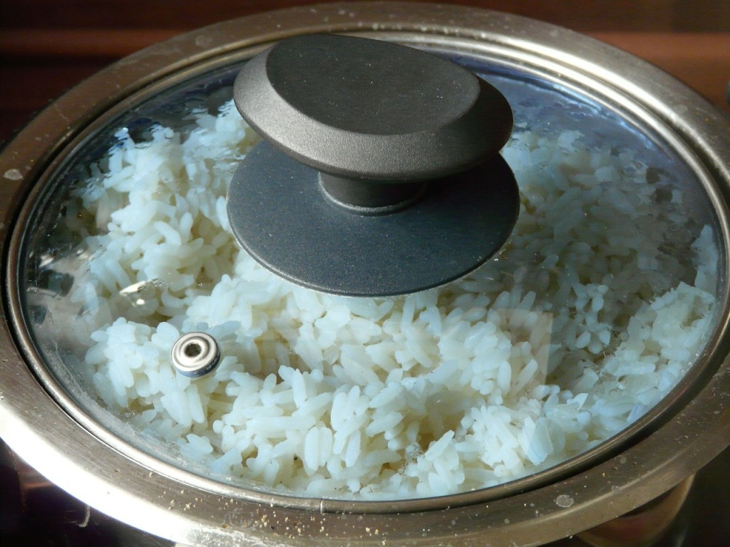 Is A Rice Cooker Worth The Price? See Our Thoughts